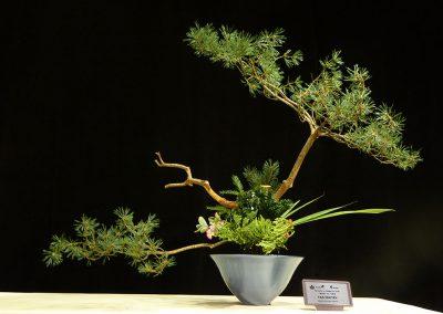 Cấm bông Ikebana